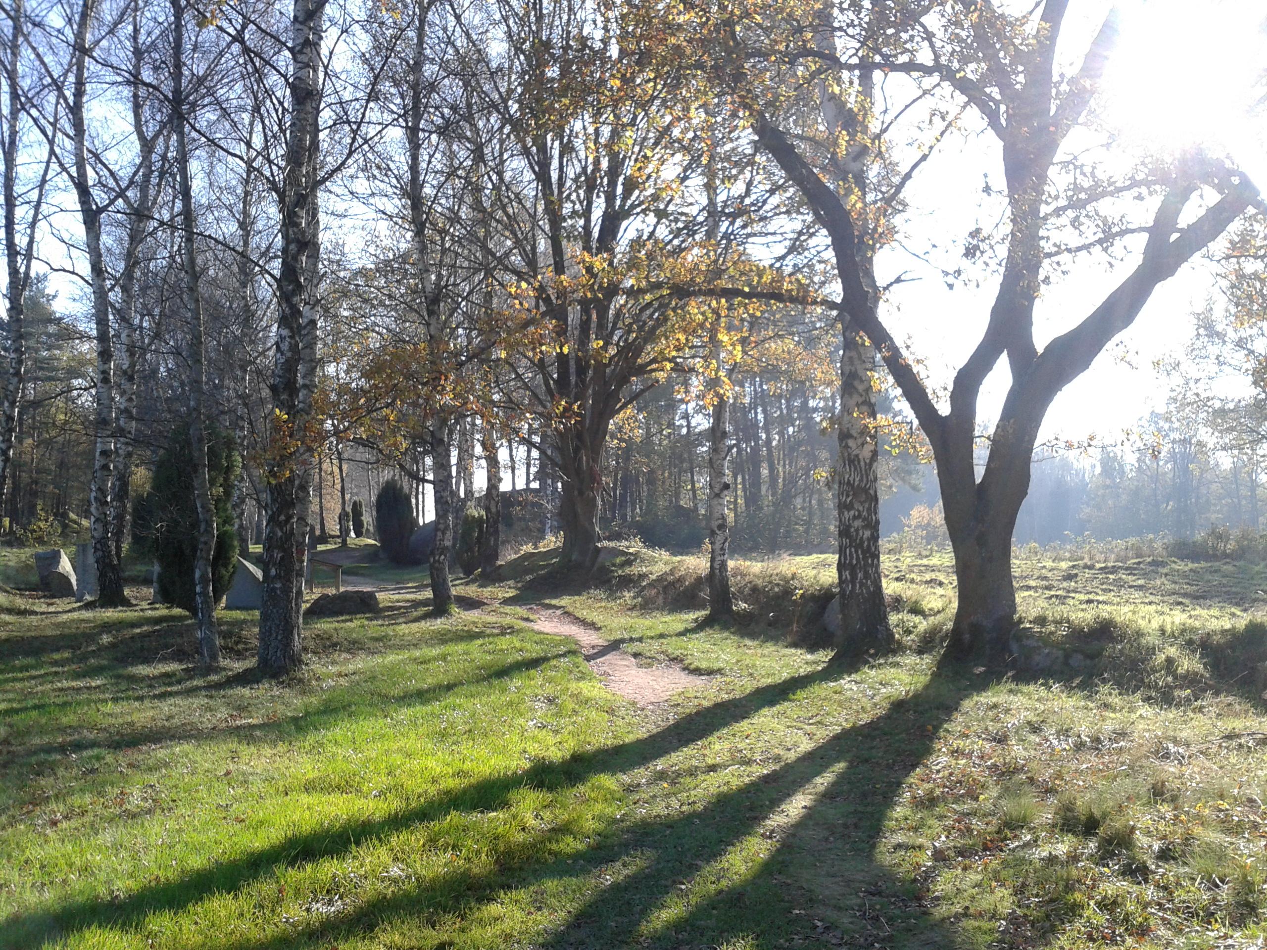Herbstgedanken zur Entschleunigung